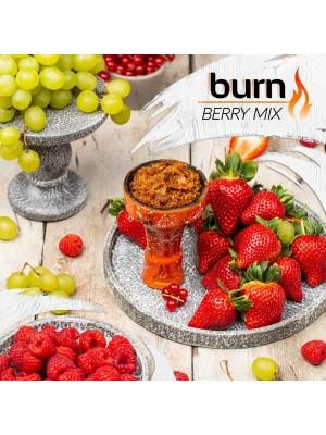 Табак Burn BERRY MIX (100g)