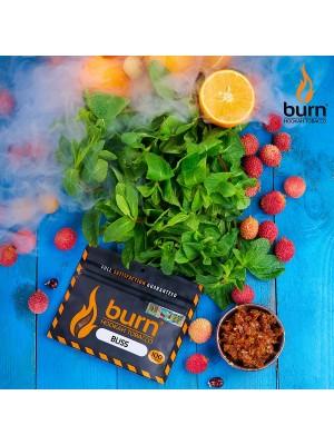Табак Burn BLISS (100 g) (Личи и мята)