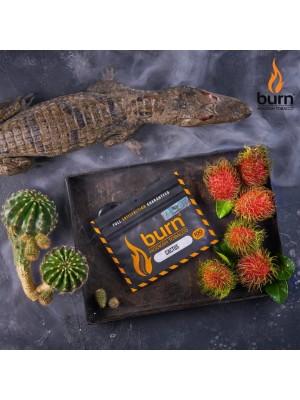 Табак Burn CACTUS (100 g) (Кактус)