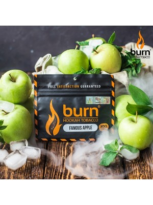Табак Burn FAMOUS APPLE (100 g) (Ледяное яблоко)