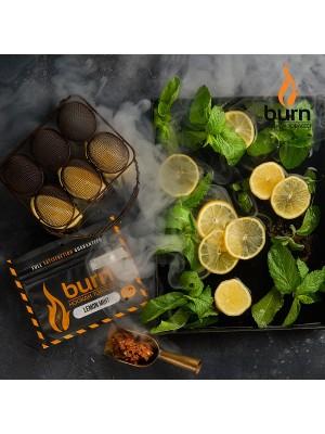 Табак Burn LEMON MINT (100 g) (Лимон с мятой)